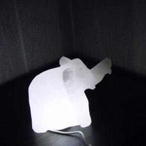 Animal Shape Lamp 2